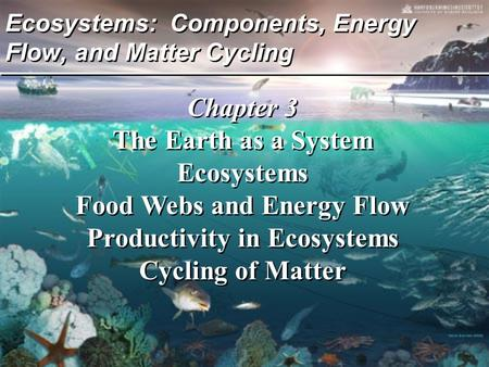 Ecosystems: Components, Energy Flow, and Matter Cycling Chapter 3 The Earth as a System Ecosystems Food Webs and Energy Flow Productivity in Ecosystems.