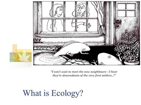 What is Ecology?. Origin of the word…ecology Greek origin OIKOS = household LOGOS = study of… Study of the house/environment in which we live.