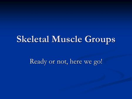 Skeletal Muscle Groups Ready or not, here we go!.