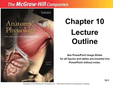 10-1 Chapter 10 Lecture Outline See PowerPoint Image Slides for all figures and tables pre-inserted into PowerPoint without notes. Copyright (c) The McGraw-Hill.
