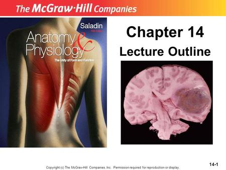 Chapter 14 Lecture Outline Copyright (c) The McGraw-Hill Companies, Inc. Permission required for reproduction or display. 14-1.