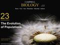 CAMPBELL BIOLOGY Reece Urry Cain Wasserman Minorsky Jackson © 2014 Pearson Education, Inc. TENTH EDITION Clicker Questions by Bryan Jennings 23 The Evolution.