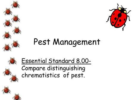 Essential Standard Compare distinguishing chrematistics of pest.
