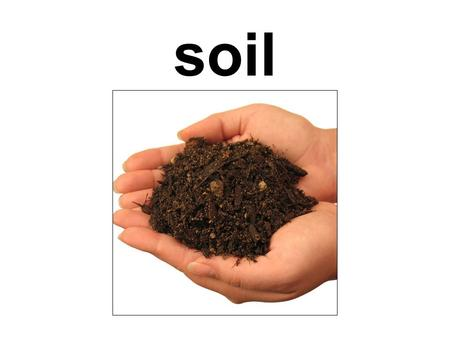 Soil. organic the top layer of the earths surface, consisting of rock and mineral particles mixed with organic matter.