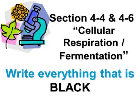 Section 4-4 & 4-6 Cellular Respiration / Fermentation Section 4-4 & 4-6 Cellular Respiration / Fermentation Write everything that is BLACK.