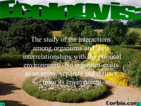 1 The study of the interactions among organisms and their interrelationships with the physical environment. No organism exists as an entity, separate and.