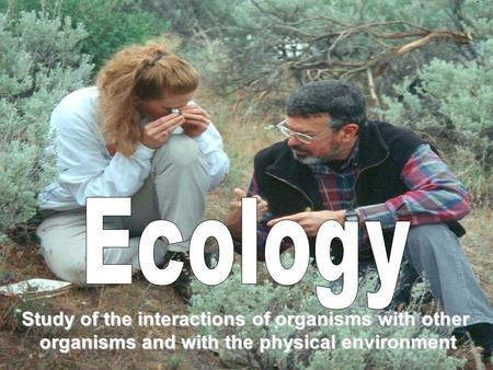 Study of the interactions of organisms with other organisms and with the physical environment.
