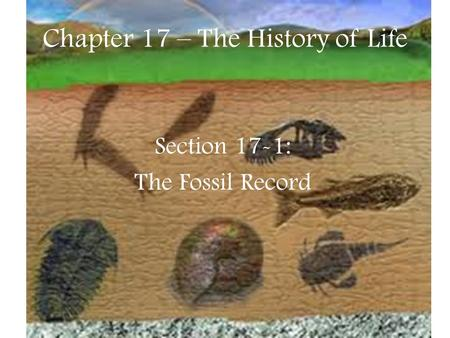 Chapter 17 – The History of Life Section 17-1: The Fossil Record.